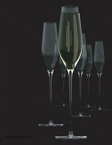 SALT & PEPPER Cuvee set van 6 champagneflutes inh 21  cl