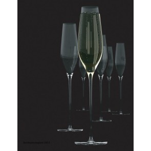 SALT & PEPPER Cuvee set van 6 champagneflutes inh 21  cl