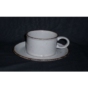 Wedgwood Midwinter Creation thee kop & schotel